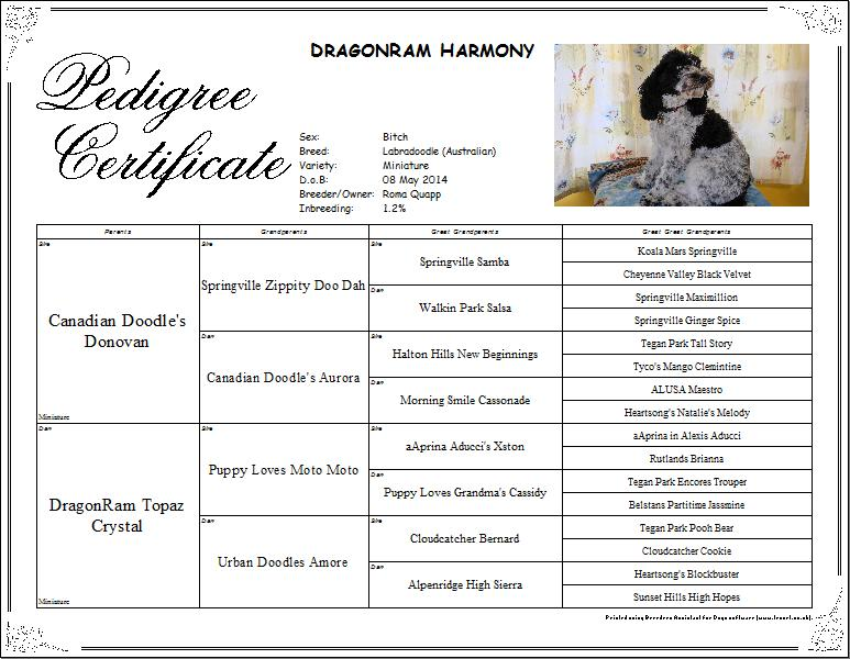 Harmony_pedigree