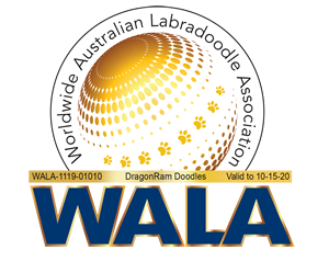 Worldwide Australian Labradoodle Association Member