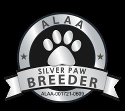 Silver Australian Labradoodle Association  of America Member
